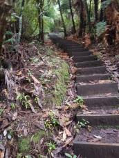 Those damn stairs (it's its Stava segment name too)