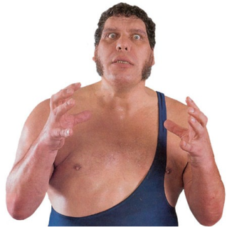 cool-pictures-of-andre-the-giant-5-reasons-why-wwe-will-always-be-a-big-man-s-territory-pictures-of-andre-the-giant