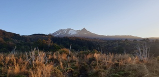 The backside of the maunga